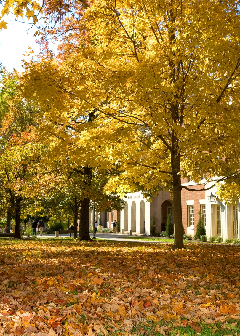 Picture of King Library at Miami University during Fall Semester. Picture of trees with fall leaves in the foreground.