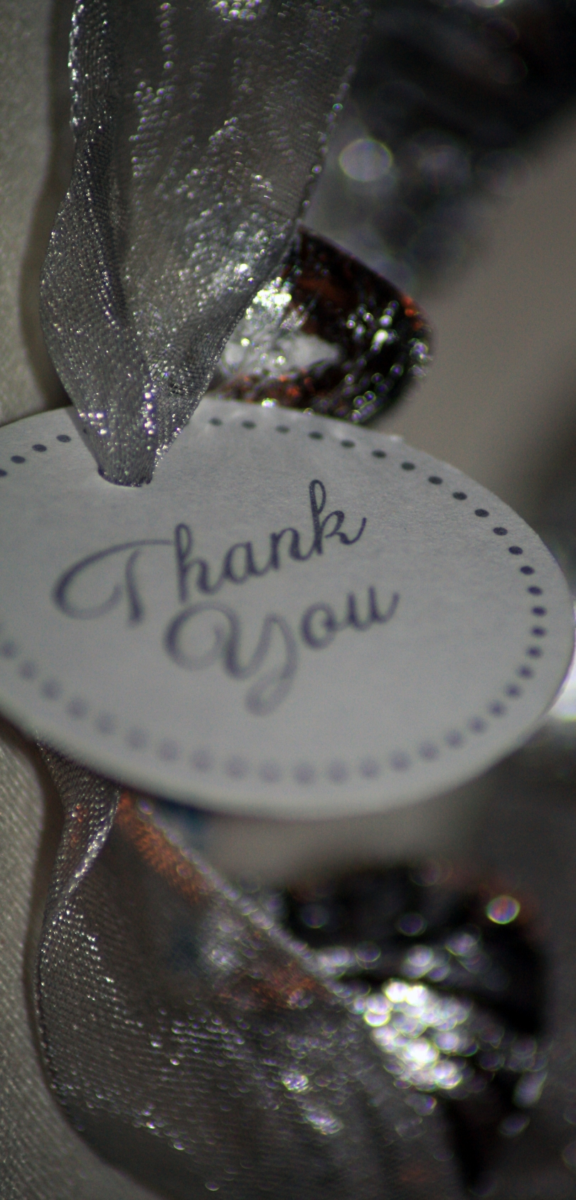 "A round cardboard tag with the words ""Thank You,"" surrounded by silver dots around the edge of the tag, appears in the center of the frame. Extending through a hole in the top of the tag, behind the tag, and stretching to the top and bottom of the frame is a metallic silver ribbon."