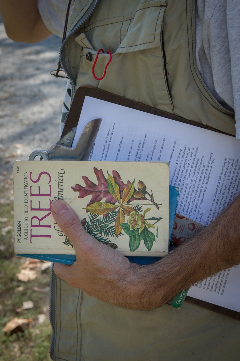 A man's hand holds a tree identification book and a clipboard against his body. He is wearing a field vest. Text: Golden. A Guide to Field Identification Trees. Of North America.