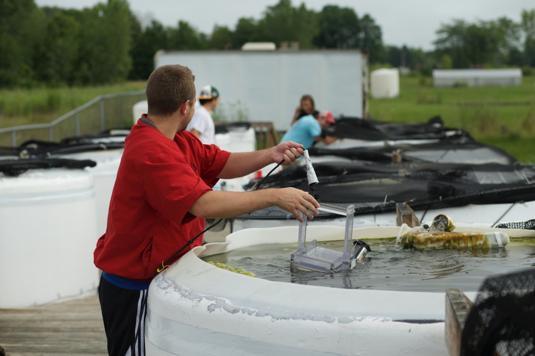 A man, who is holding some scientific equipment in a waist-high pool full of water looks over his shoulder at other people doing similar work in the background.