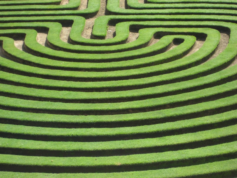 Formal garden shrubbery maze.