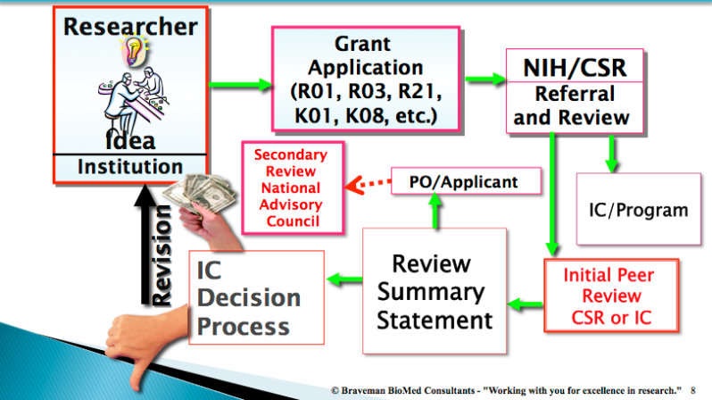 A flow chart describing NIH review process. The chart starts with Researcher idea and Institution. An solid arrow then leads to Grant Application (R01, R03, R21, K01, K08, etc.). A solid line leads to NIH/CSR Referral and Review. From there, there are two solid arrows. The first leads to IC/Program, which is the end of that chain. The second arrow leads to Initial Peer Review CSR or IC. A solid arrow leads from Initial Peer Review CSR or IC to Review Summary Statement. There are two solid arrows leading from Review Summary Statement. The first leads to PO/Applicant, and there is a dotted line that leads from there to Secondary Review National Advisory Council. The second solid arrow leads from Review Summary Statement to IC Decision Process. From IC Decision Process, there are two options: 1 - funded (represented by a handful of cash) and 2 - unfunded (represented by a thumbs-down). From unfunded, a solid arrow labeled revision leads back to the start - Researcher idea and institution.