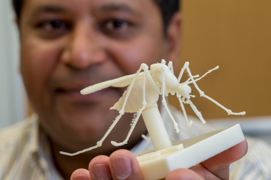 "Dhananjai ""DJ"" Rao holds a model of a mosquito"