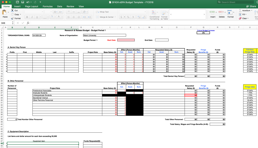 Screenshot of the eSPA budget template