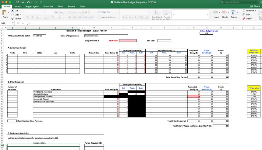 Screenshot of the eSPA budget template