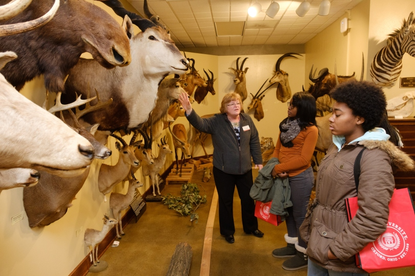 A staff member talks about an exhibit with Hefner Museum visitors. The walls of the museum are filled with the stuffed heads of various grazing animals.
