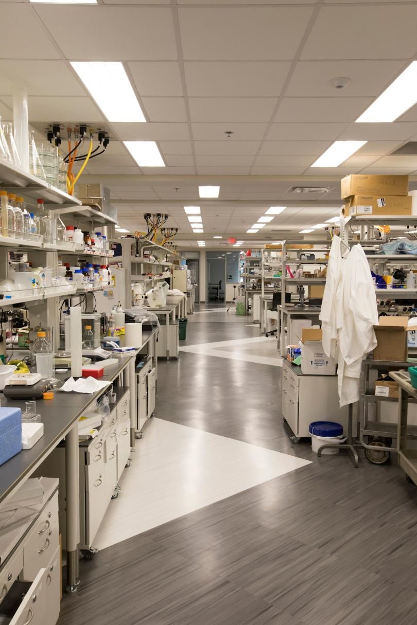 A Miami University laboratory